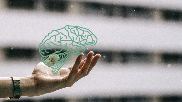 Cursos de verano MECD_UIMP 2017: Neurobiología de las dificultades de aprendizaje