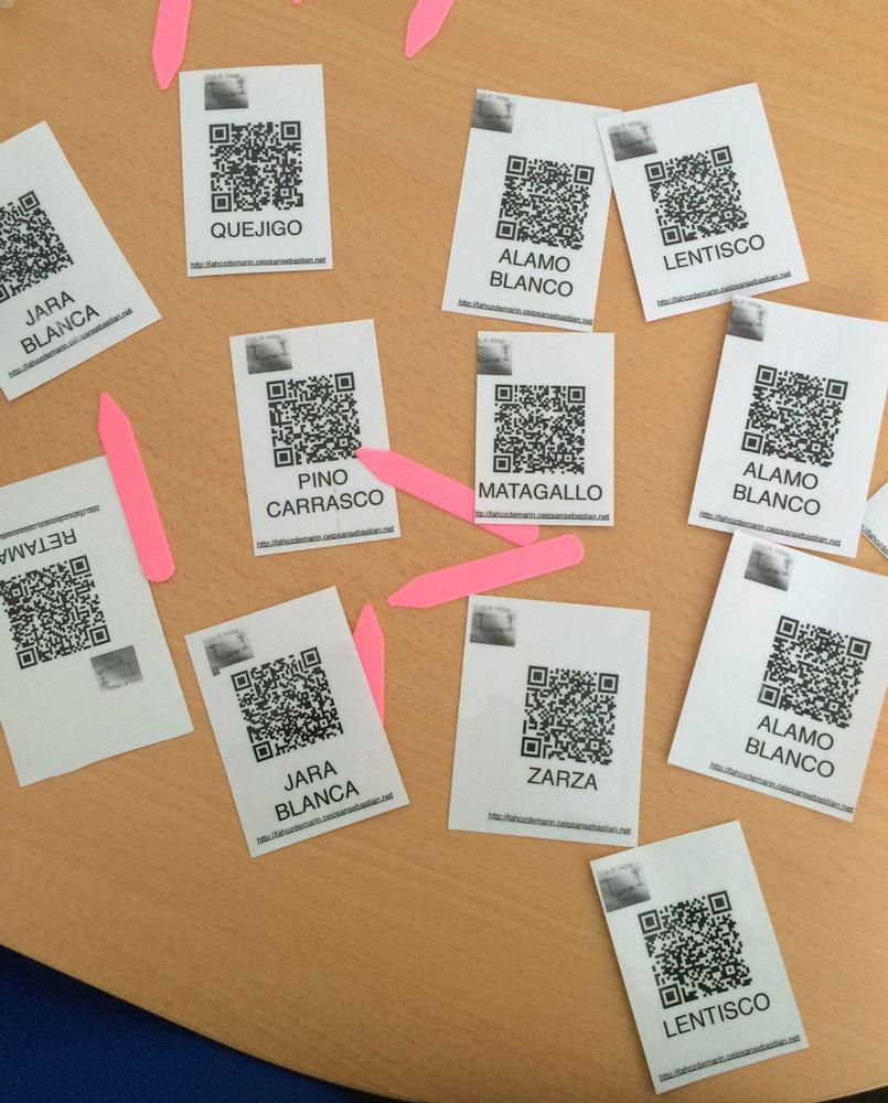 Tarjetas con QR impresos en papel y plastificados,