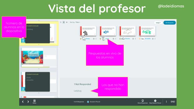Imagen 10. Vista del profesor/a.